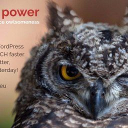 owl WordPress Services, owl WP Services, owl power EUROPE