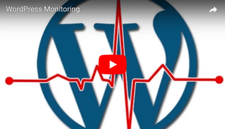 WordPress Monitoring