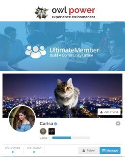 UltimateMember