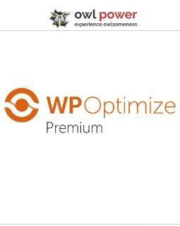 WP-Optimize-Premium