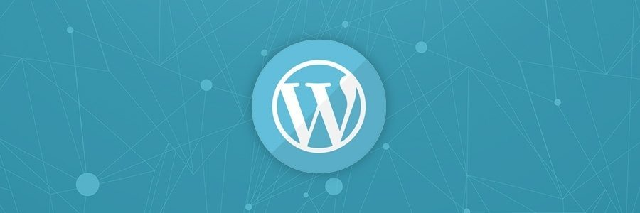 6 WordPress Consulting advice for your endless WP plugins galore